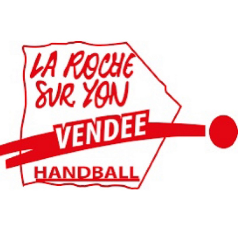 LRSY VENDEE HANDBALL